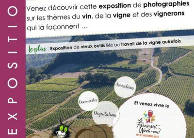 Exposition vignes paysages vignerons à Yenne avec les Guides du Patrimoine Savoie Mont Blanc ©OT YENNE (1)