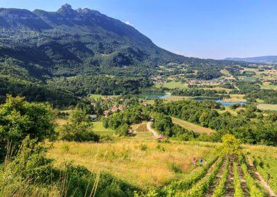 Exposition vignes paysages vignerons à Yenne avec les Guides du Patrimoine Savoie Mont Blanc ©OT YENNE (3)