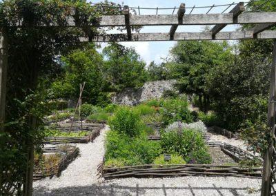 abbaye d'aulps avec GuidesPSMB jardin des simples (2)