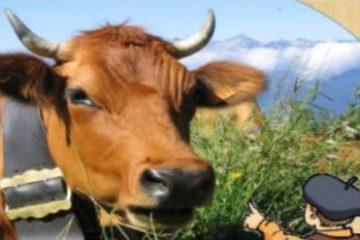 Exposition voie lactée Moûtiers Guides du Patrimoine Savoie Mont Blanc