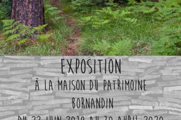 Exposition Forêts d'ici et d'ailleurs Maison du patrimoine bornandin avec Guides du Patrimoine Savoie Mont Blanc