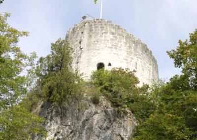 LA ROCHE SUR FORON Tour des Comtes de Genève visite Guides PSMB